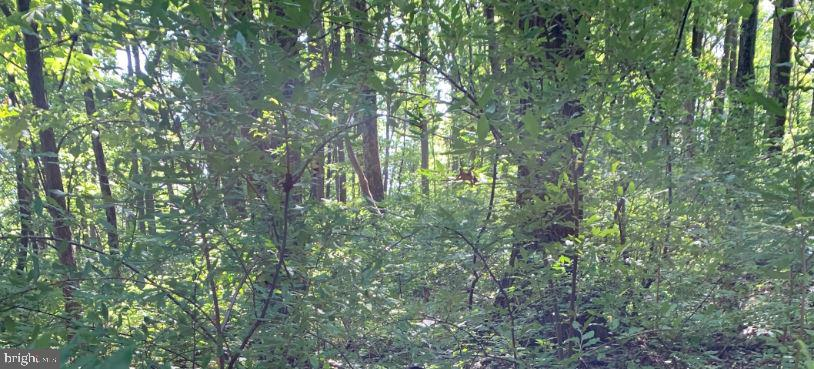 Land for Sale at Williams Township, Pennsylvania 18042 United States