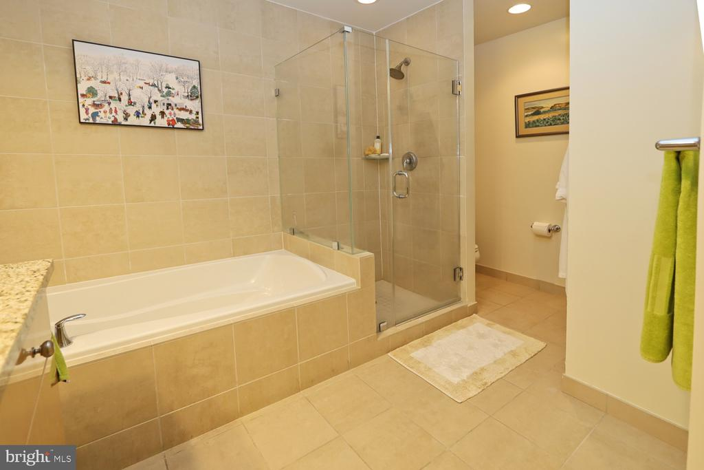 Separate tub and shower with private commode space - 11990 MARKET ST #1914, RESTON