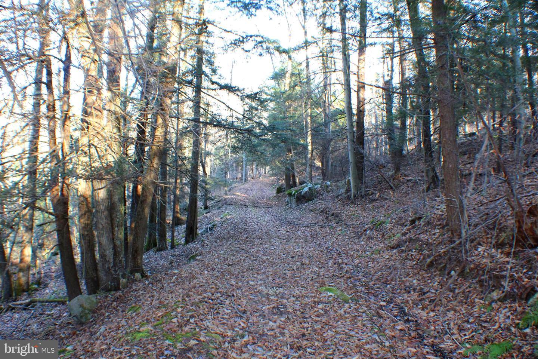 土地,用地 为 销售 在 Gormania, 西弗吉尼亚州 26720 美国