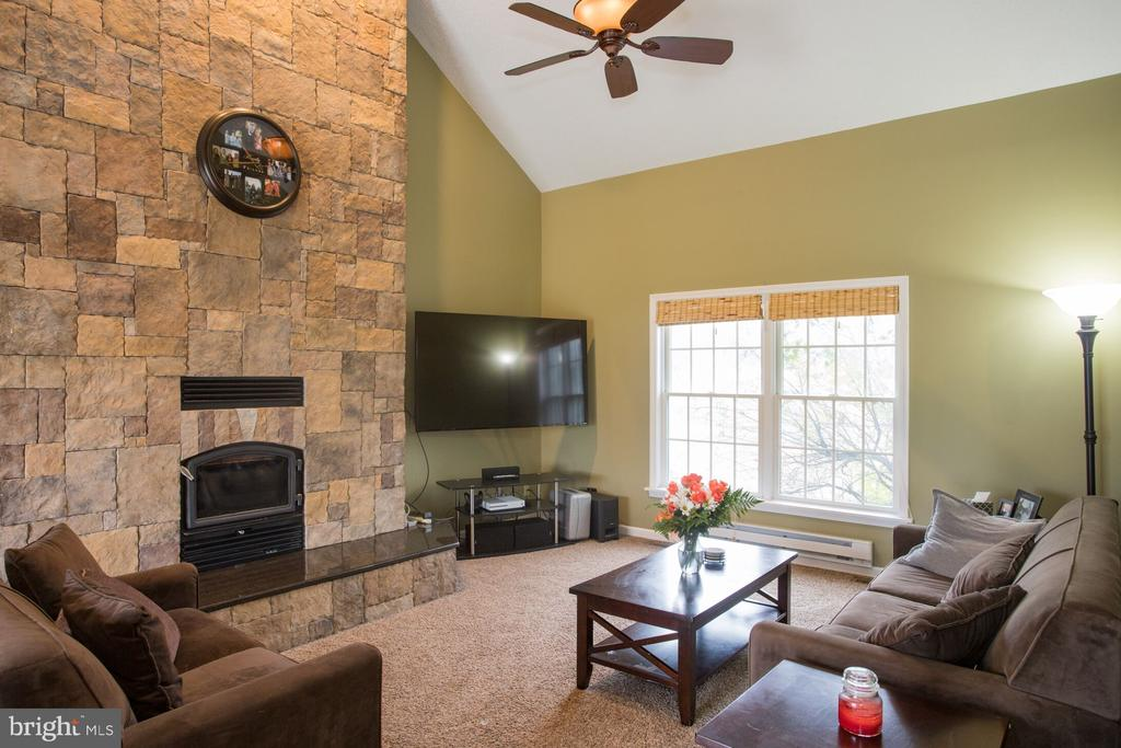 Family Room w/Fireplace - 201 MANOR DR, MIDDLETOWN