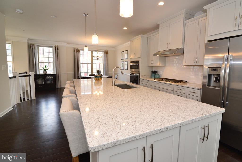 Gleaming Quartz Countertops! - 25017 CAMBRIDGE HILL TER, CHANTILLY