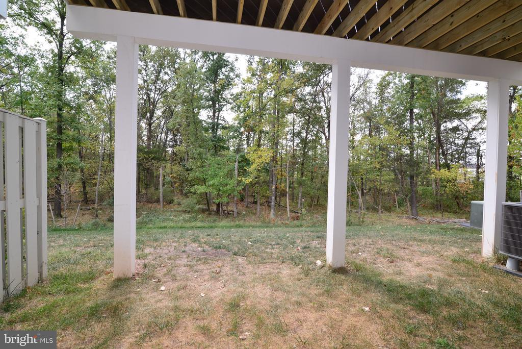 Private Rear Yard - 25017 CAMBRIDGE HILL TER, CHANTILLY