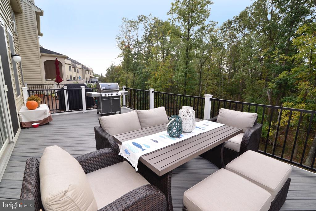 Spacious Deck for Entertaining! - 25017 CAMBRIDGE HILL TER, CHANTILLY