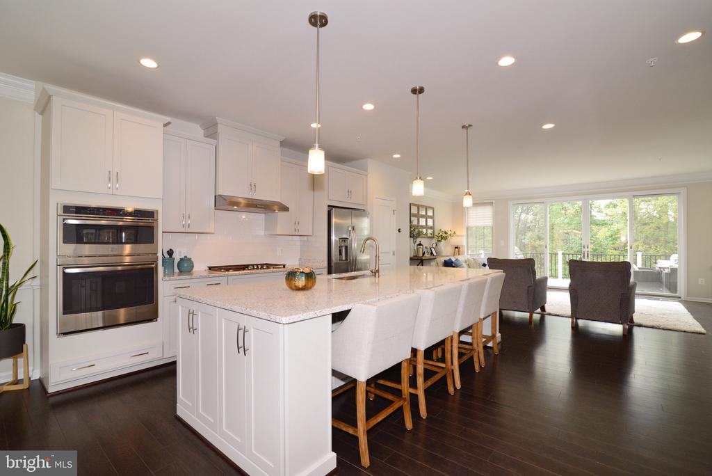 Gourmet Kitchen with Bar Space! - 25017 CAMBRIDGE HILL TER, CHANTILLY