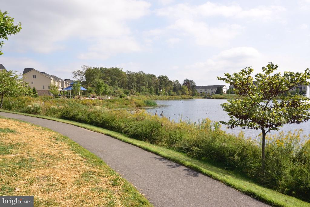 Walking/Jogging Trails around Lake - 25017 CAMBRIDGE HILL TER, CHANTILLY