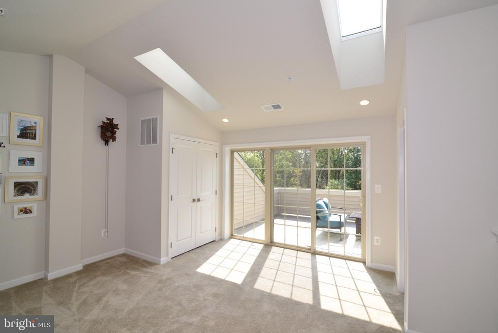 Skylights let in lots of Sunshine! - 25017 CAMBRIDGE HILL TER, CHANTILLY