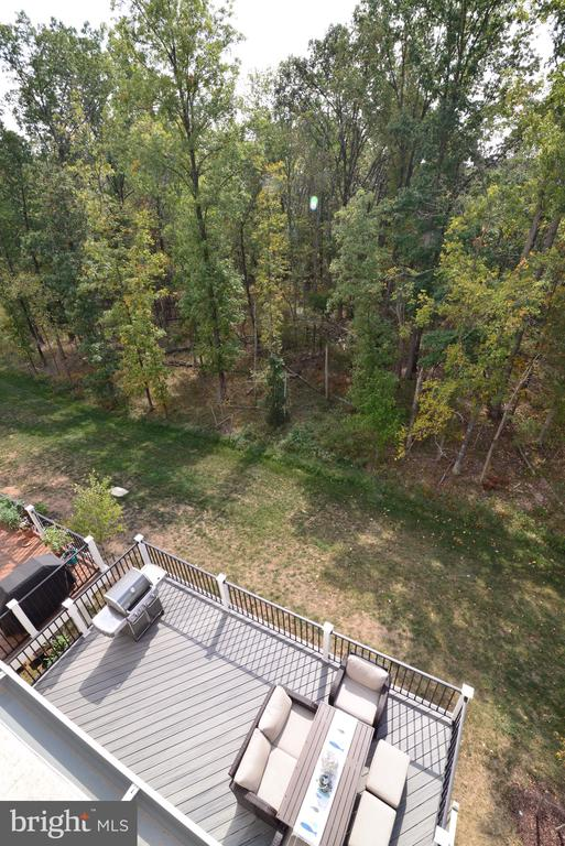 View of lower deck from Rooftop Deck - 25017 CAMBRIDGE HILL TER, CHANTILLY