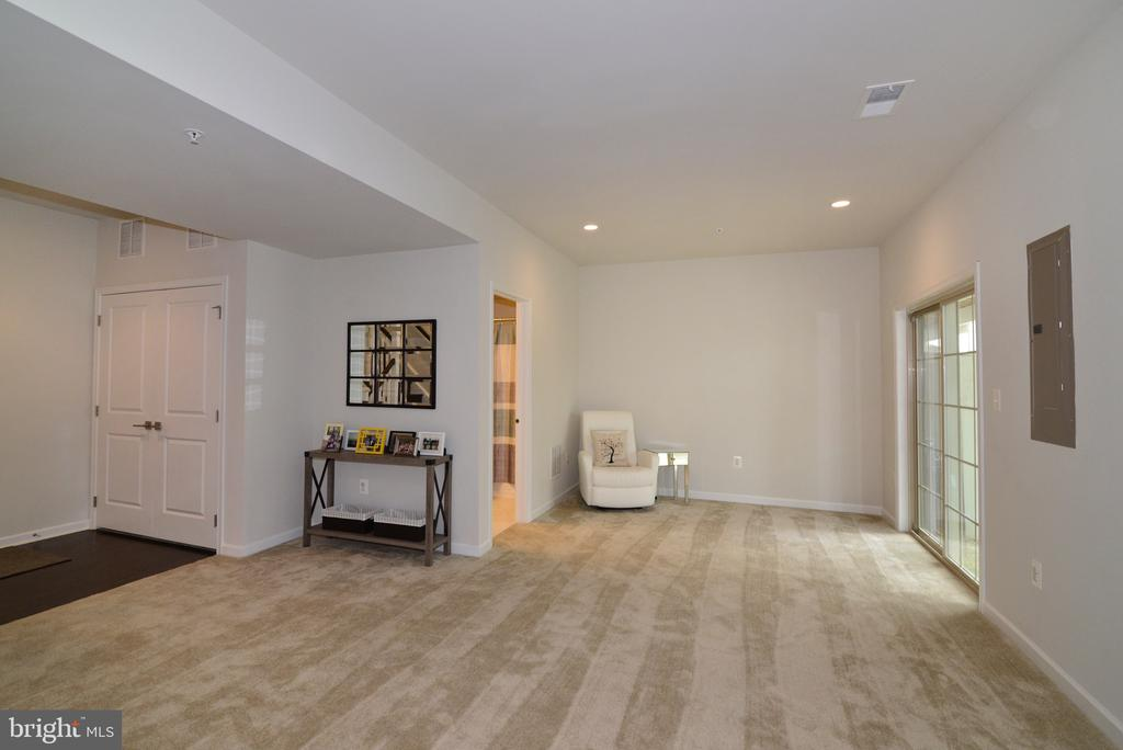 Spacious Lower Level - 25017 CAMBRIDGE HILL TER, CHANTILLY