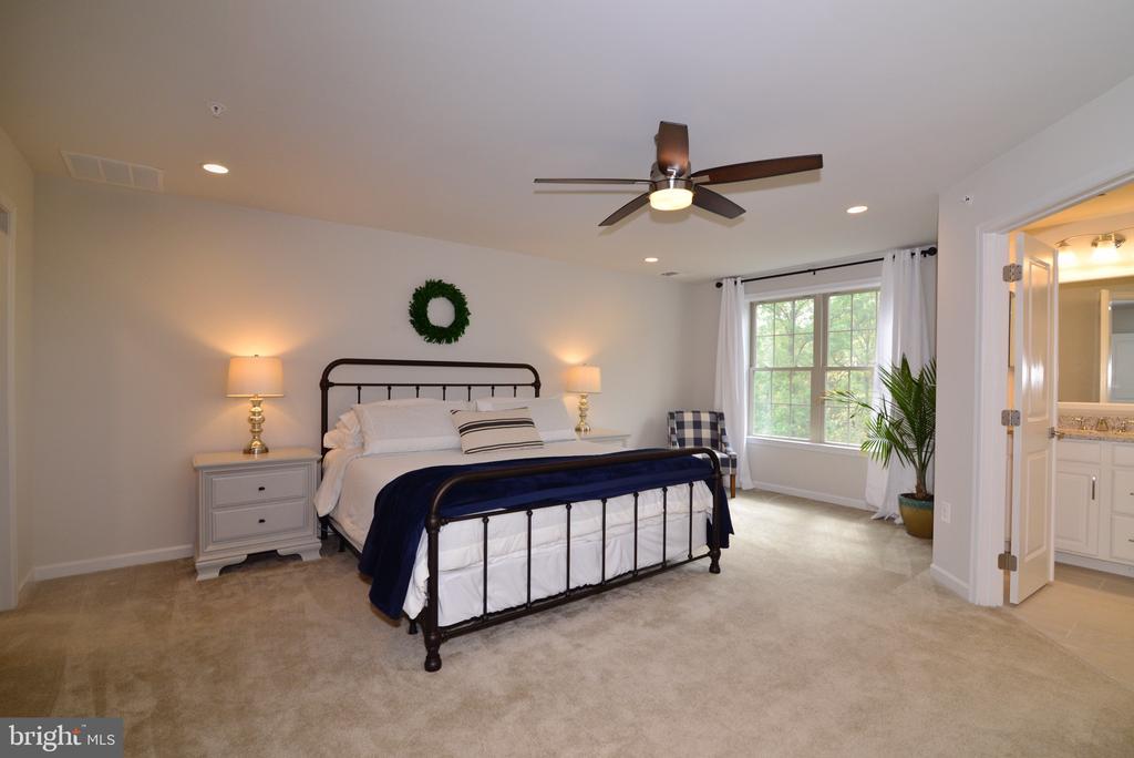 Master Bedroom - 25017 CAMBRIDGE HILL TER, CHANTILLY