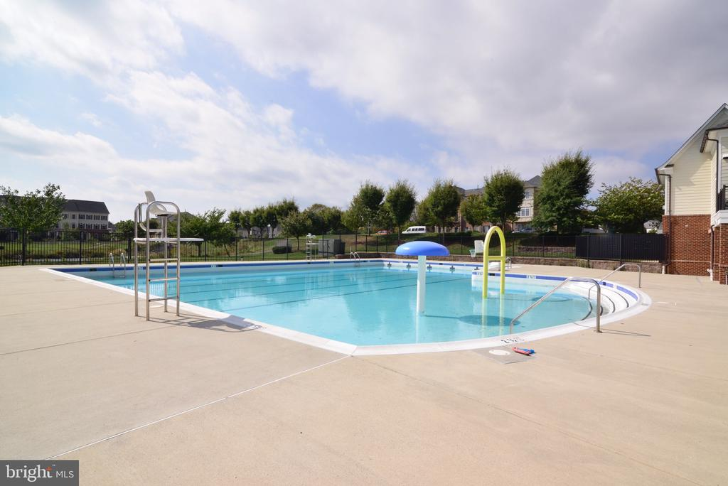 Community Pool - 25017 CAMBRIDGE HILL TER, CHANTILLY