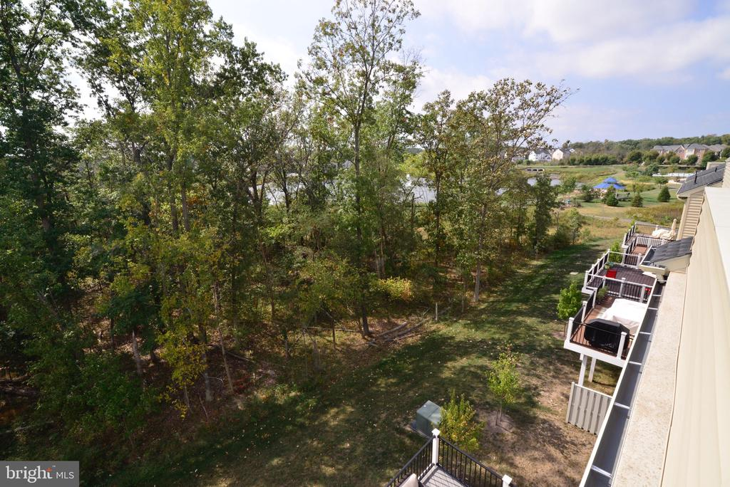 Views of the Lake from Rooftop Deck - 25017 CAMBRIDGE HILL TER, CHANTILLY