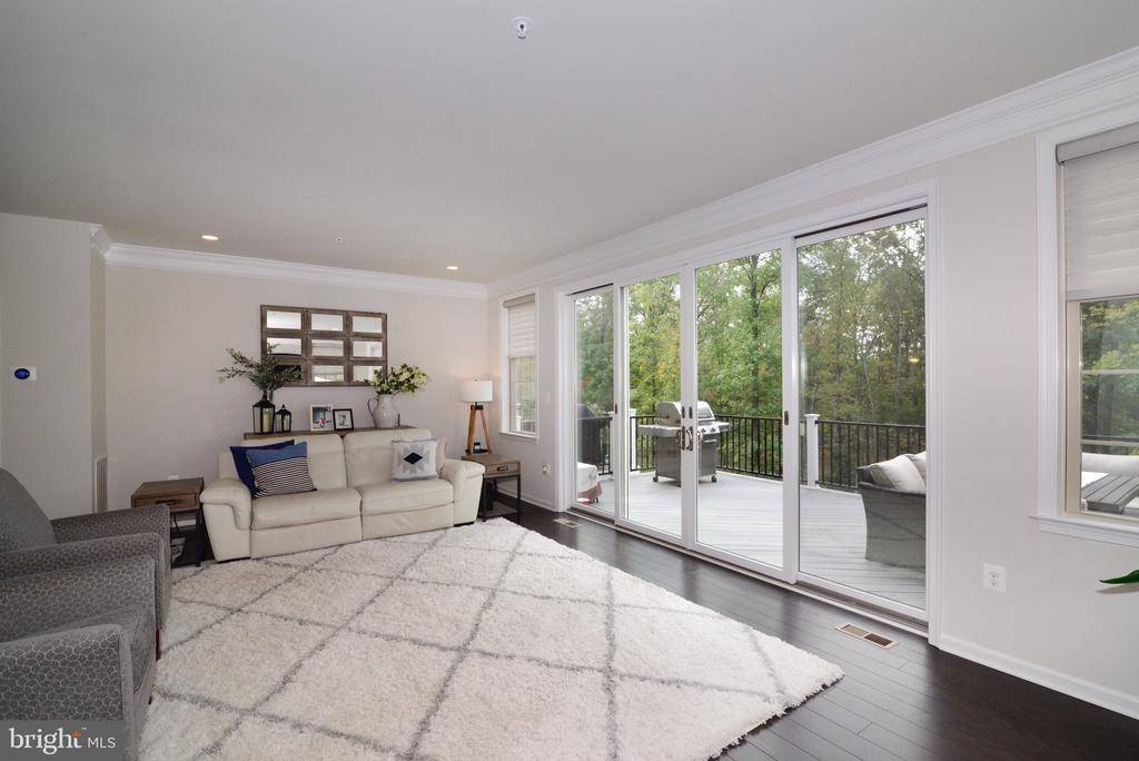 Living Room - 25017 CAMBRIDGE HILL TER, CHANTILLY