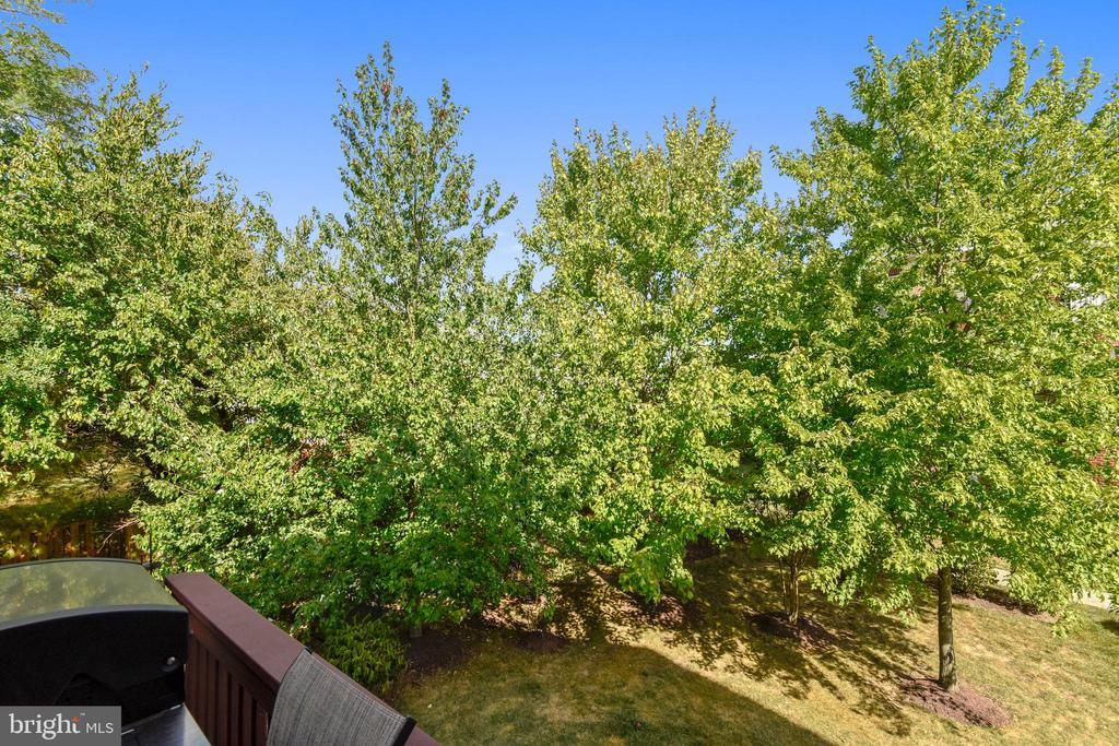 MORE TREES! - 124 QUIETWALK LN, HERNDON