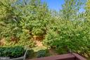 TREES! - 124 QUIETWALK LN, HERNDON