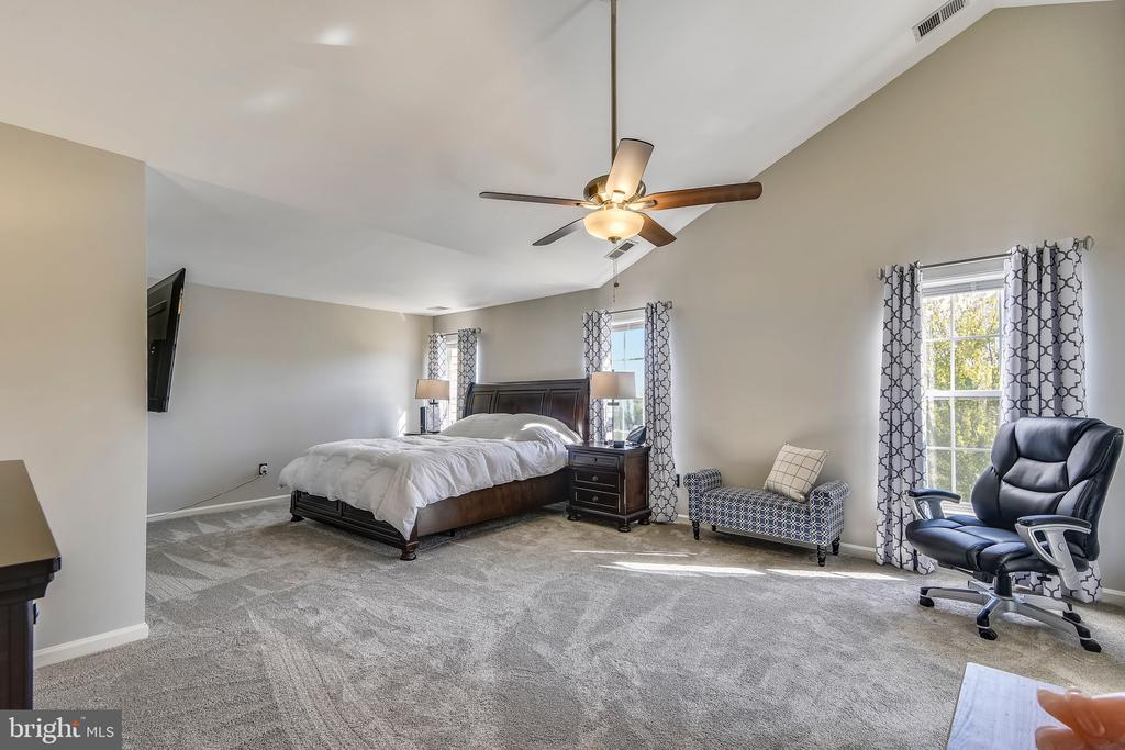 Huge Master Bedroom - 317 BAISH DR SE, LEESBURG