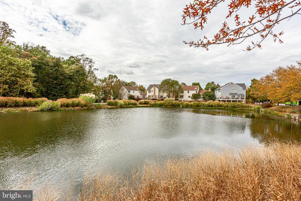 Community pond - 3702 MILLPOND CT, FAIRFAX