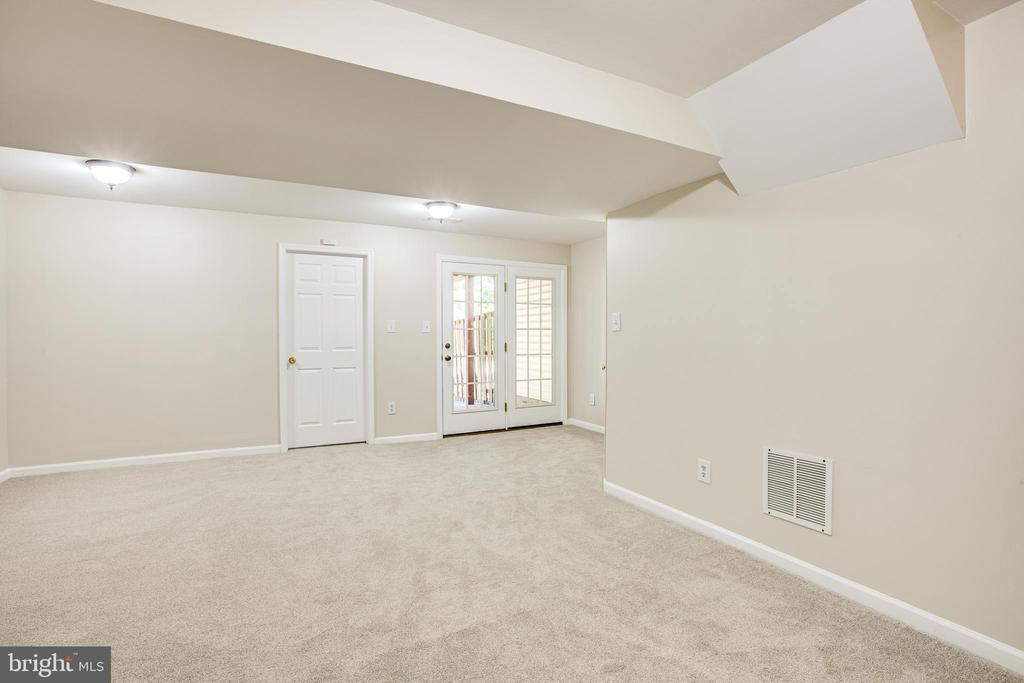 Bright walk out basement with full bedroom - 4005 FOUNTAIN BRIDGE CT, FREDERICKSBURG