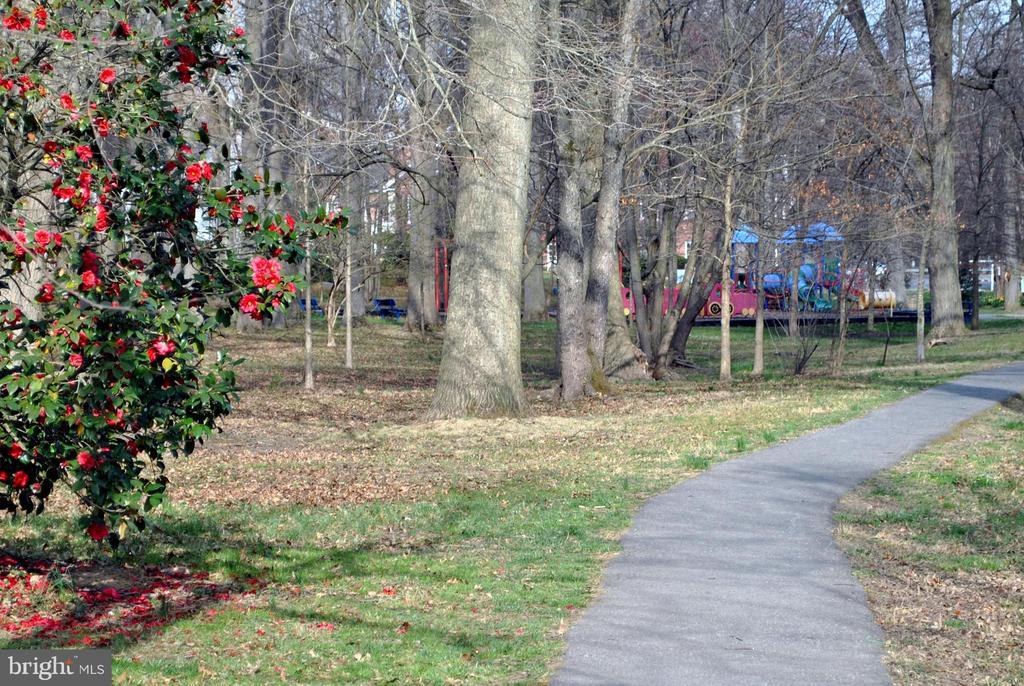 Walking/biking trails - 6612 BALTIMORE AVE, UNIVERSITY PARK