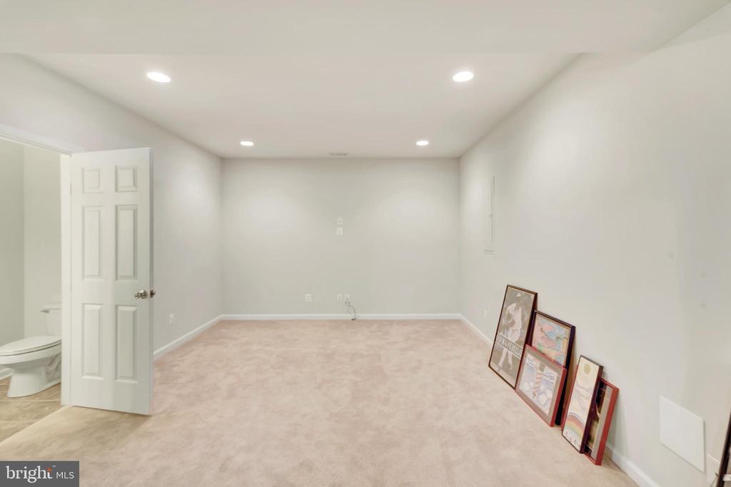 Basement media room  14'-0