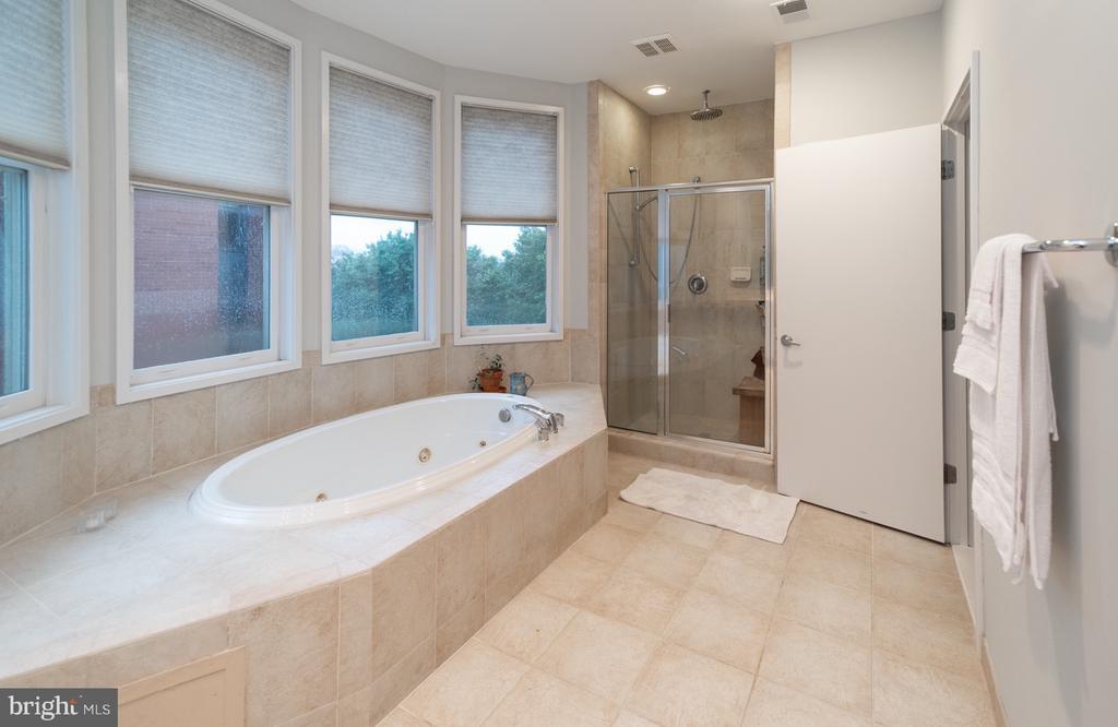 Master bath with separate shower - 2086 N OAKLAND ST, ARLINGTON