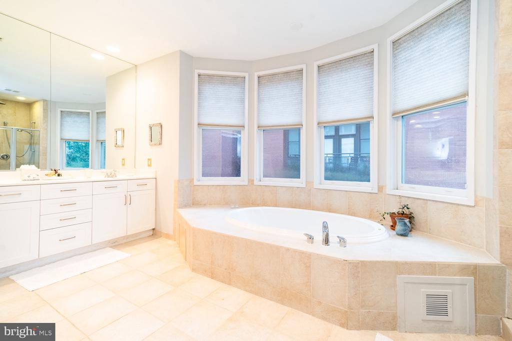 Master bath with jetted tub - 2086 N OAKLAND ST, ARLINGTON