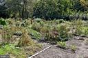 Community Garden - 3041 SEDGWICK ST NW #503-D, WASHINGTON