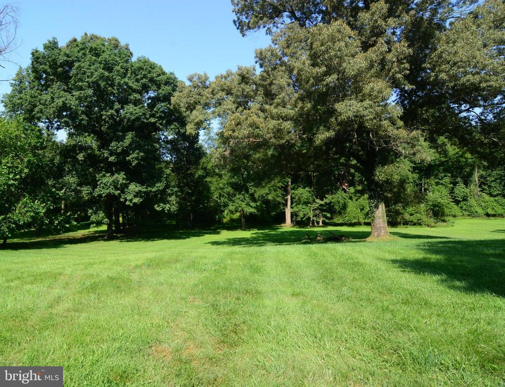 HARD TO BELIEVE THIS IS  5 MILES FROM TYSONS! - 10215 HUNTER VALLEY RD, VIENNA
