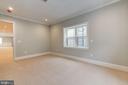 Lower level bedroom #7/bonus room - 932 DEAD RUN DR, MCLEAN