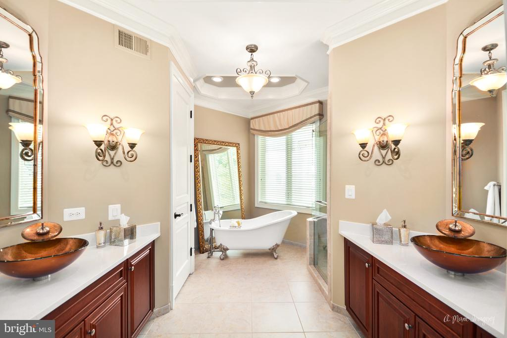 Owners en-suite Bathroom - 2662 MONOCACY FORD RD, FREDERICK