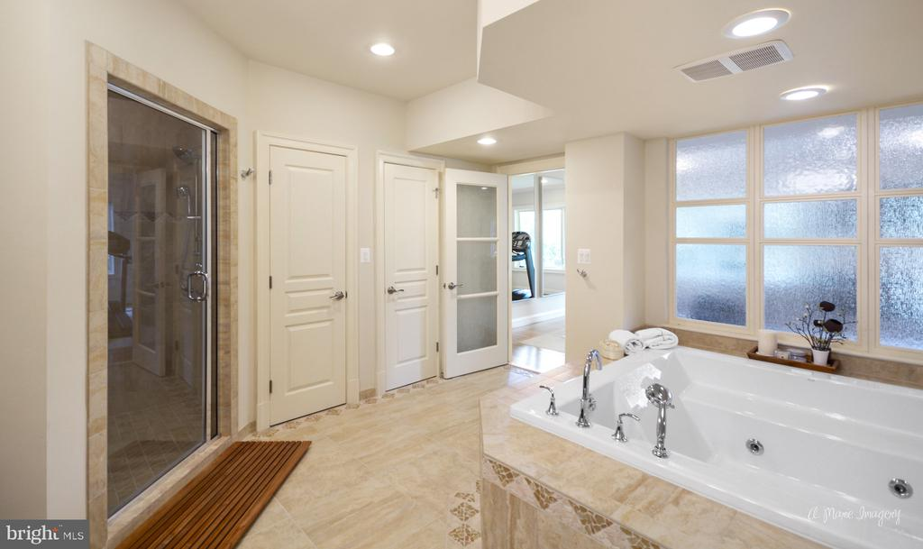 Steam Shower and Jetted Soaking Tub - 2662 MONOCACY FORD RD, FREDERICK