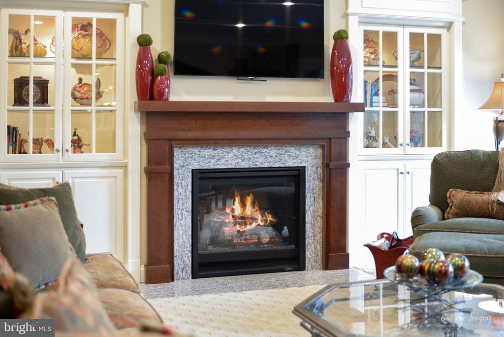 Lower Level Rec Room Gas Fireplace - 2662 MONOCACY FORD RD, FREDERICK