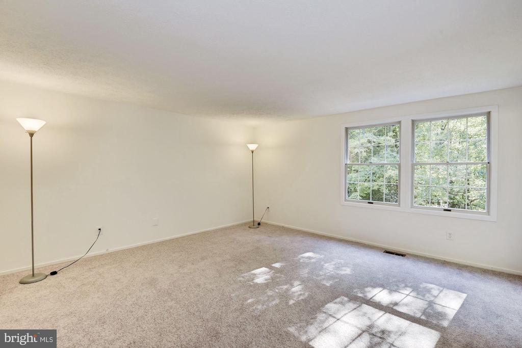 Master bedroom full of light. - 1209 GOTH LN, SILVER SPRING
