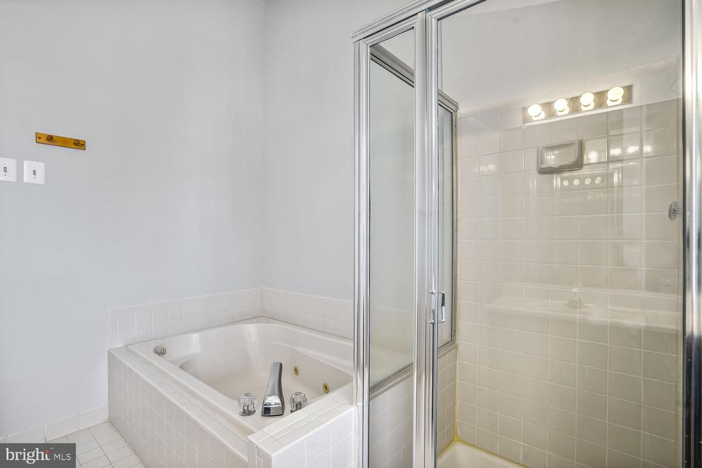 Master-bath with Jacuzzi/Jets - 46837 TRUMPET CIR, STERLING