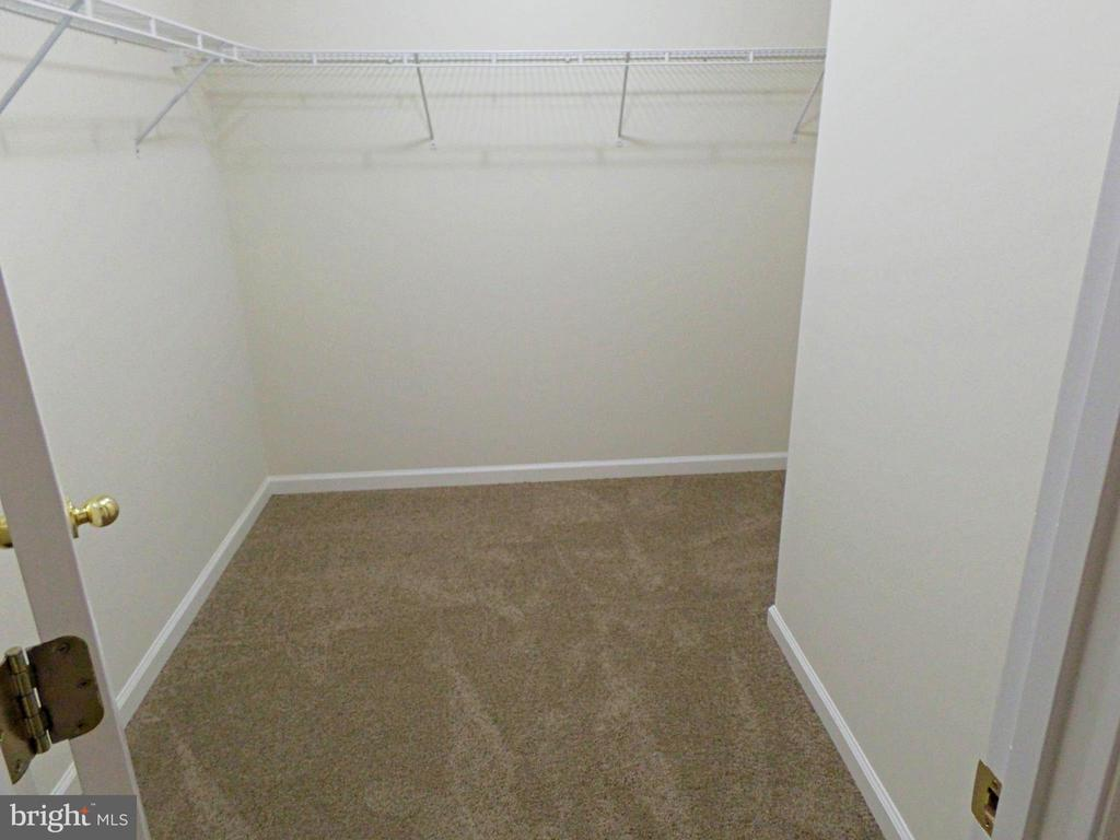 LARGE LONG CLOSET MASTER - 900 ROSEMERE AVE, SILVER SPRING