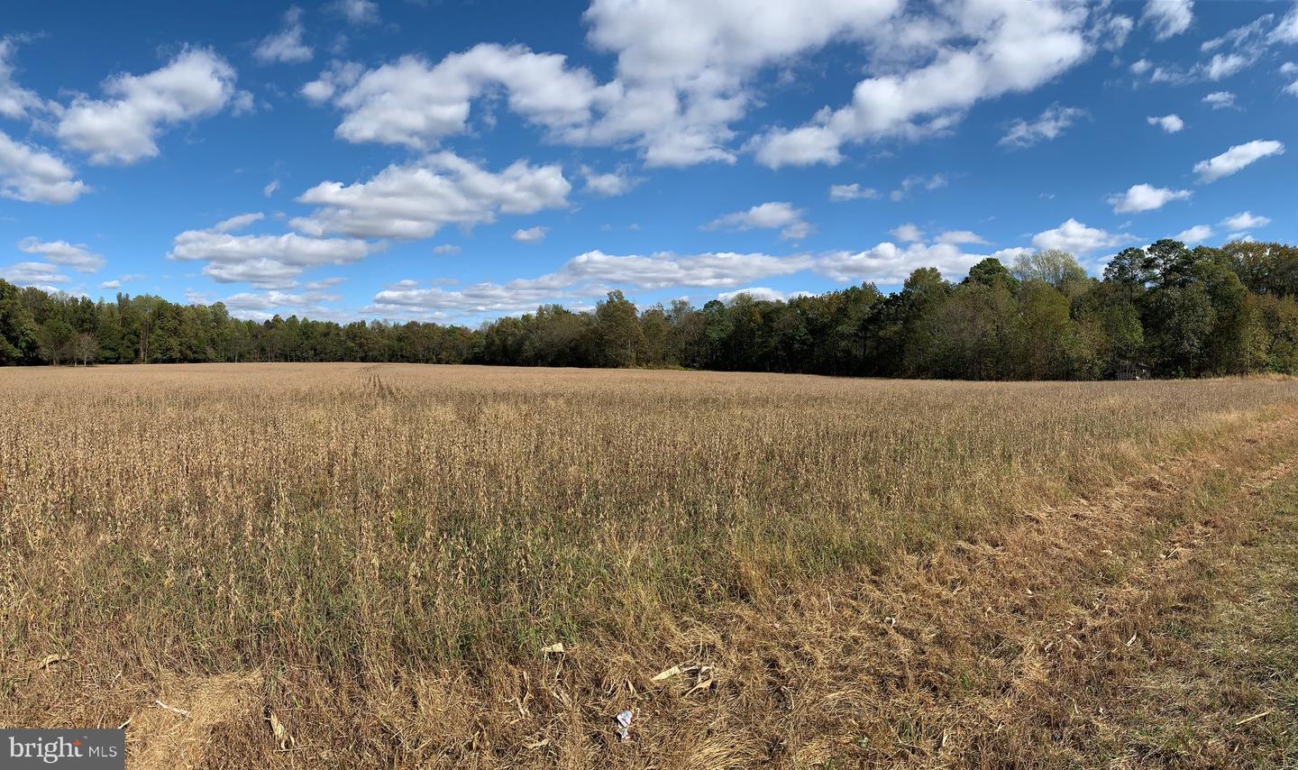 Land for Sale at Federalsburg, Maryland 21632 United States