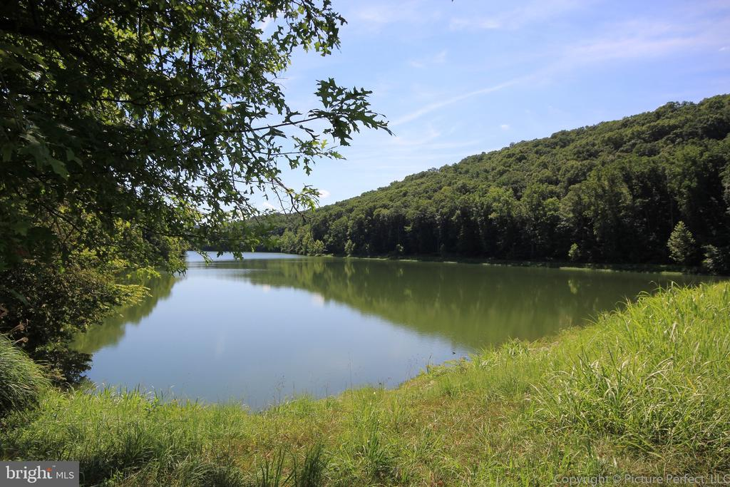 Hikes and nature await! - 10303 ILIAMNA CT, NEW MARKET