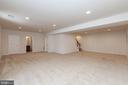 Huge Rec room with walk up exit - 11 DARDEN CT, STAFFORD