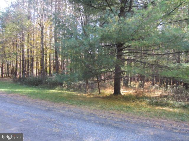 土地 為 出售 在 DEER RUN Road Swanton, 馬里蘭州 21561 美國