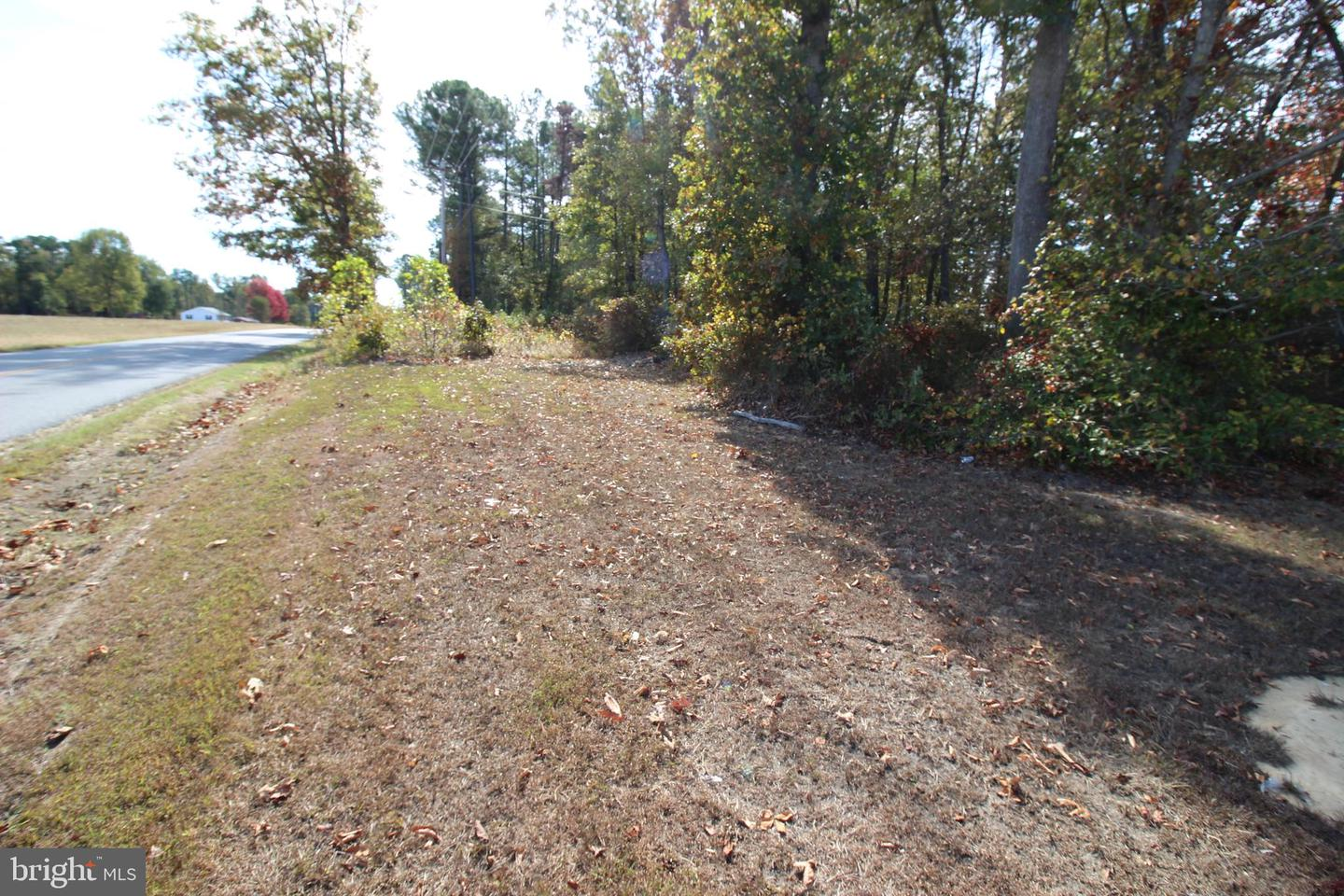 Land for Sale at Chaptico, Maryland 20621 United States