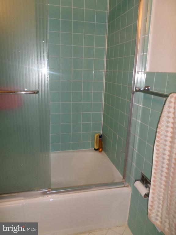 bathtub - 2939 VAN NESS ST NW #1212, WASHINGTON