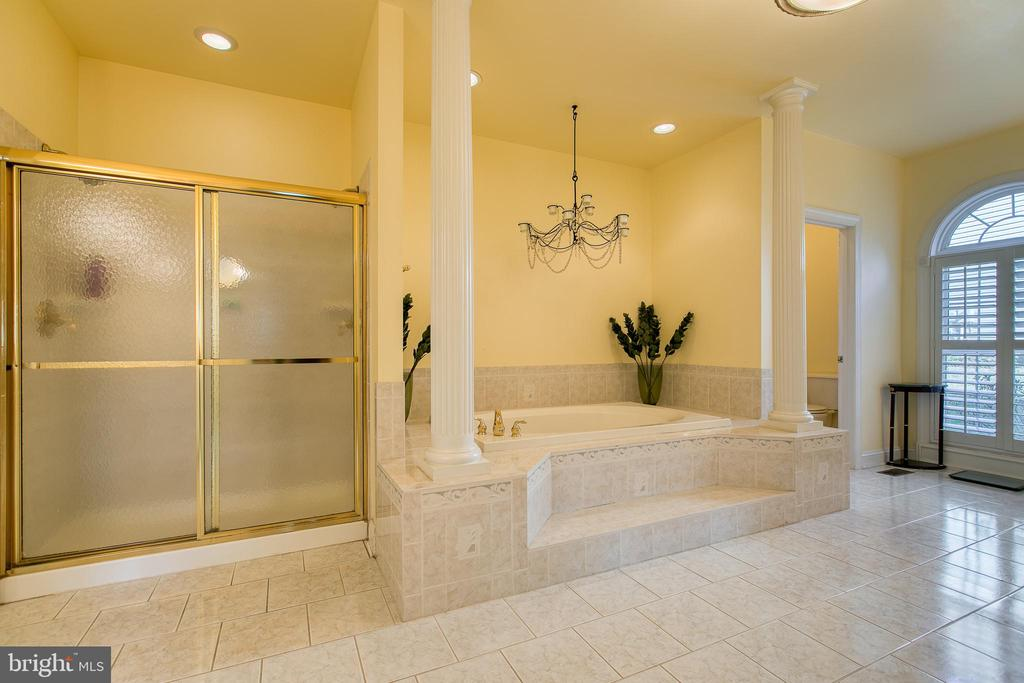 Luxurious Master spa Bathroom - 7 PLANTERS PL, STAFFORD
