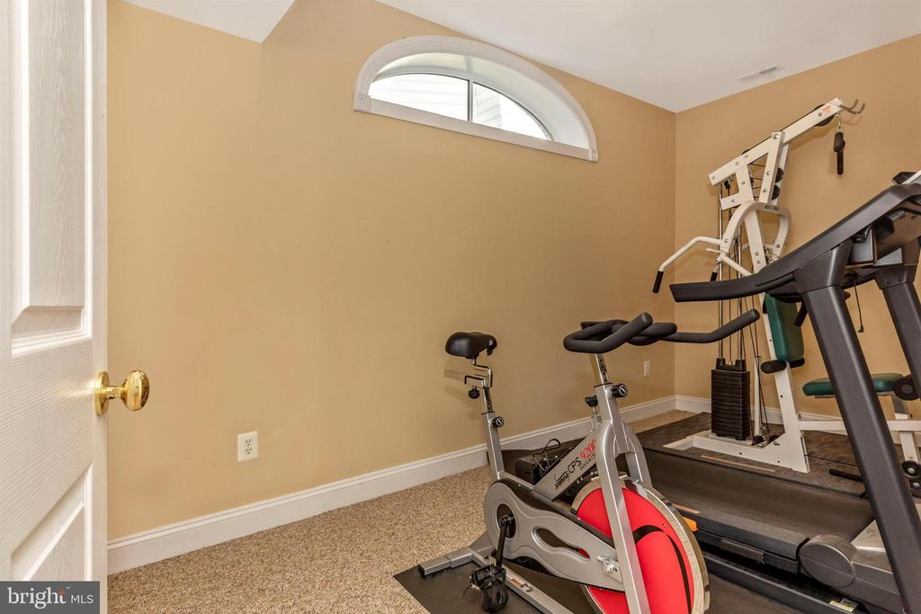 Lower level bonus den, office, or workout room. - 10035 PEBBLE BEACH TER, IJAMSVILLE