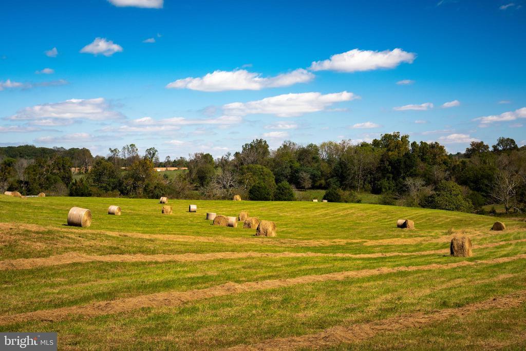 Beautifully maintained hay pastures - 8394 ELWAY LN, WARRENTON