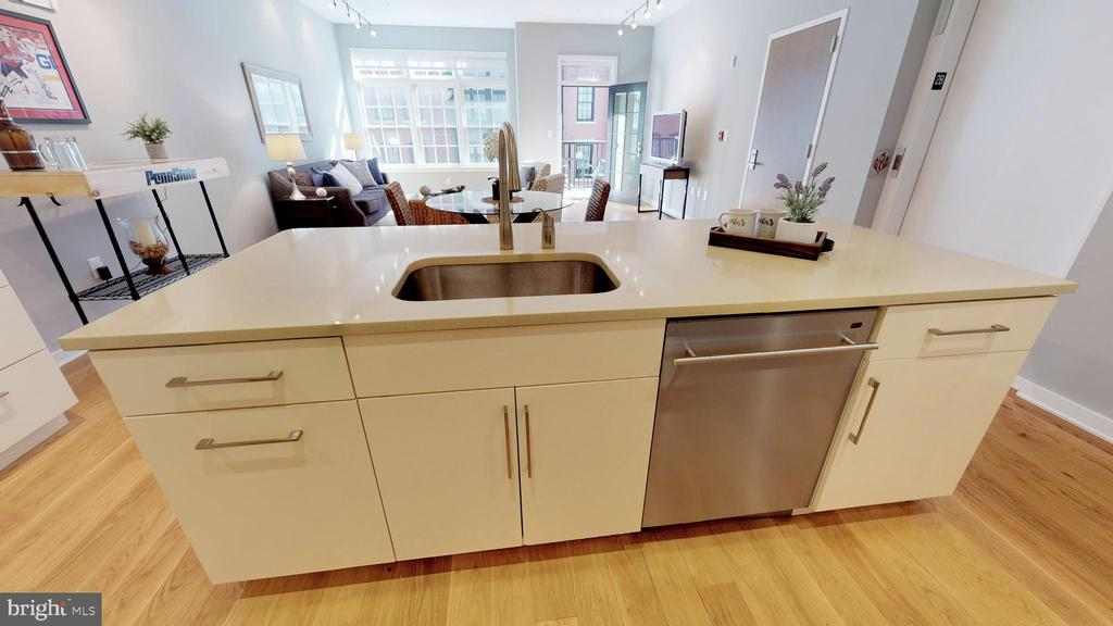 Soft Close Cabinets with Trash/Recycling Roll-out - 1610 N QUEEN ST #243, ARLINGTON