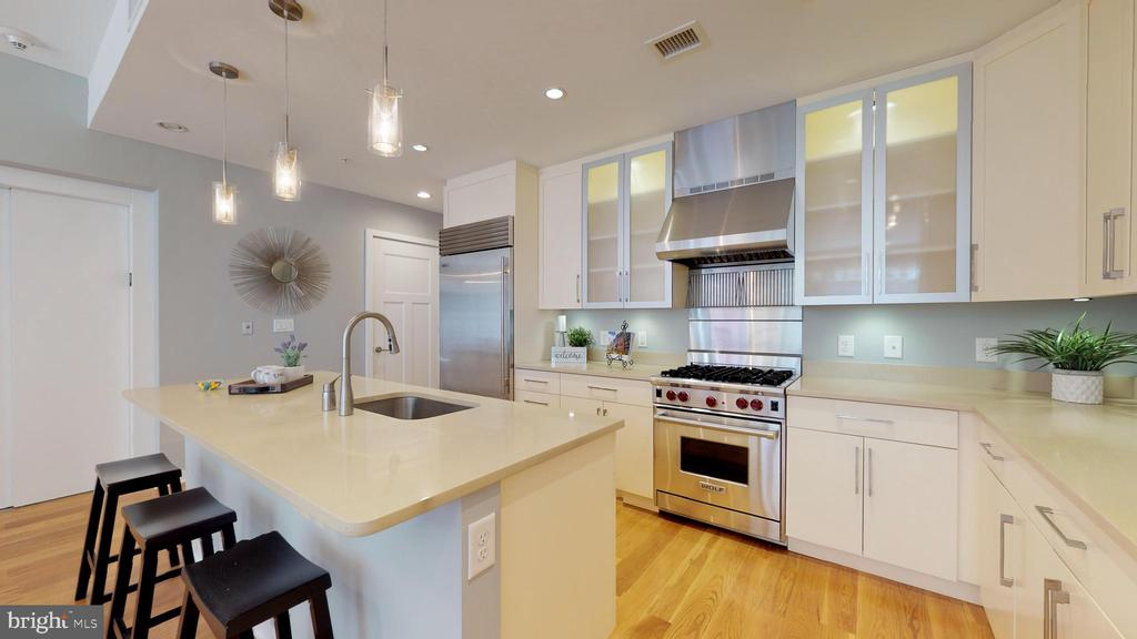Designer Kitchen With Lighted Cabinetry! - 1610 N QUEEN ST #243, ARLINGTON