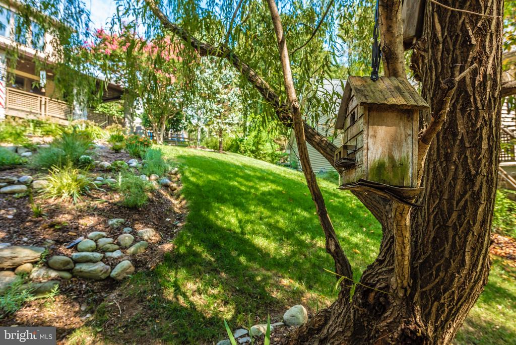 Nature abounds - 9706 WOODLAKE PL, NEW MARKET