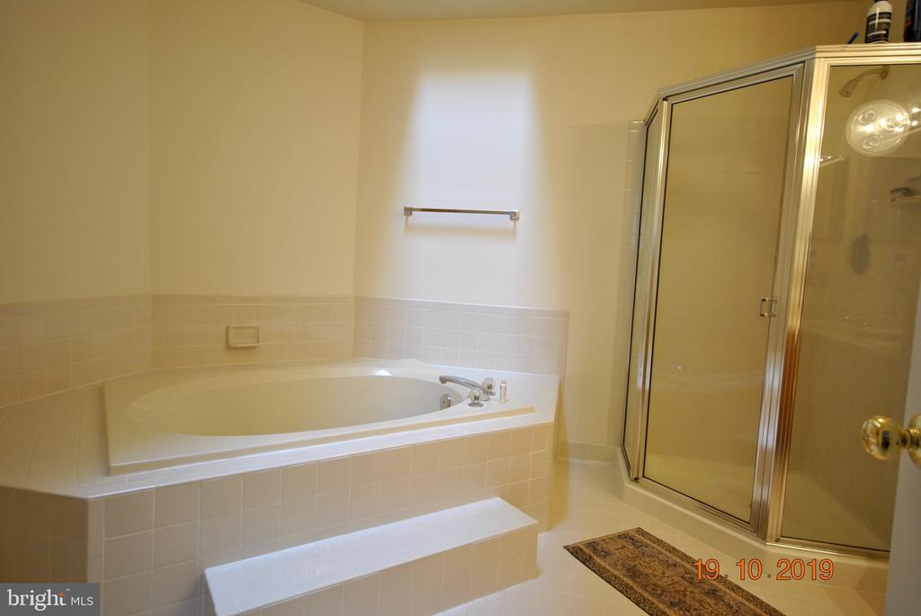 Master bath - 310 CROSSING RD, FREDERICKSBURG