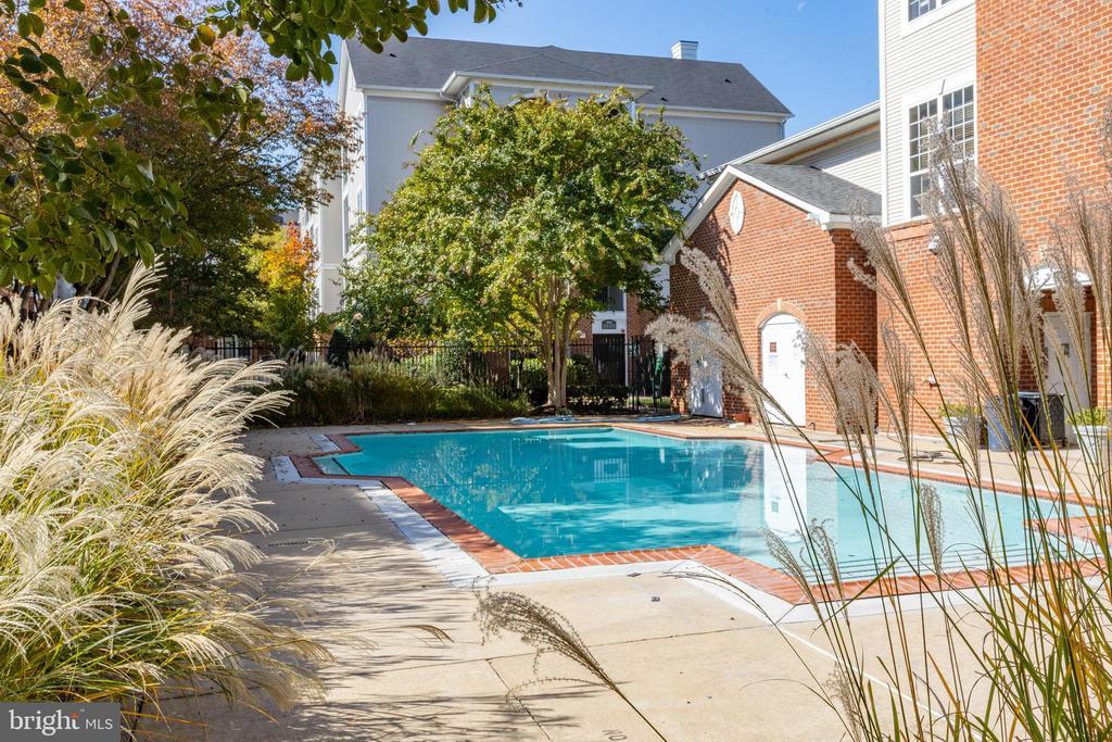 Swimming Pool - 4850 EISENHOWER AVE #123, ALEXANDRIA
