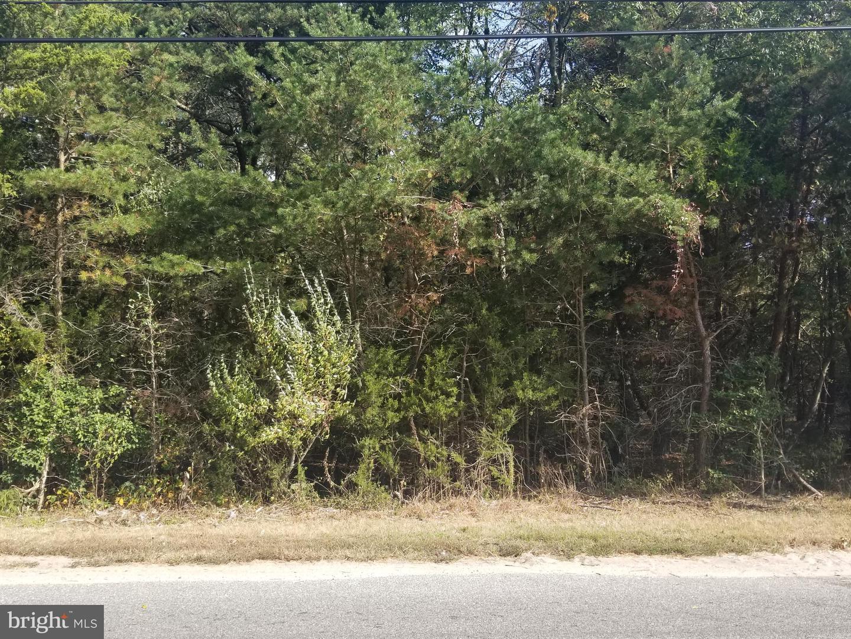 土地,用地 为 销售 在 Cedarville, 新泽西州 08311 美国
