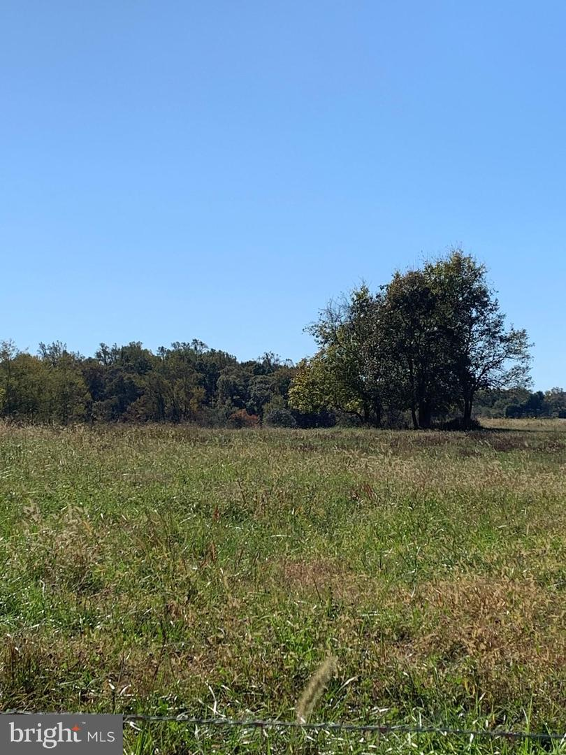 Land for Sale at Amissville, Virginia 20106 United States